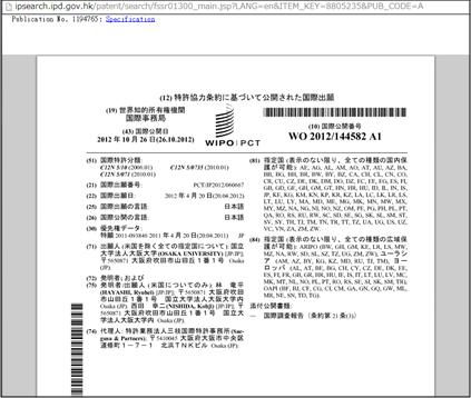 公報閲覧画面(標準特許)
